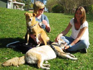 Välkommen till Glada Jyckar. På bilden ser ni Kicki & Sadie med vovvarna Blondie och Inga.